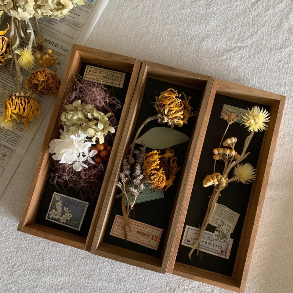 ひまわりのお花の標本箱